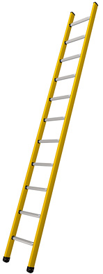 Branach Fibreglass 150 kg Single Ladder