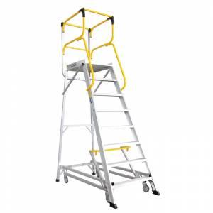 Order Picking Ladders